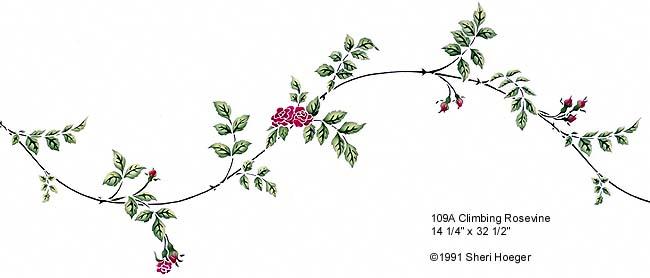 climbing roses drawing